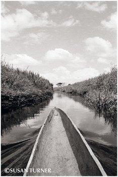 Pedaya Creek