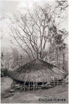 An Asaro Raun Haus