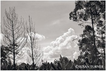 The Waghi Valley Sky