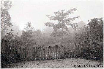 Early Morning in Manu Village