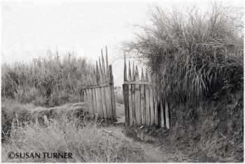 A Highlands Gate