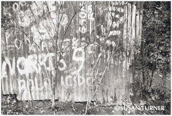 Lobu Street Fence
