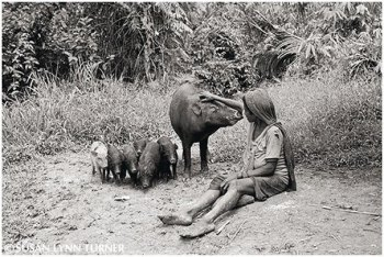 A Woman Caring for Her Pigs